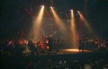 Pink Floyd, Haifa